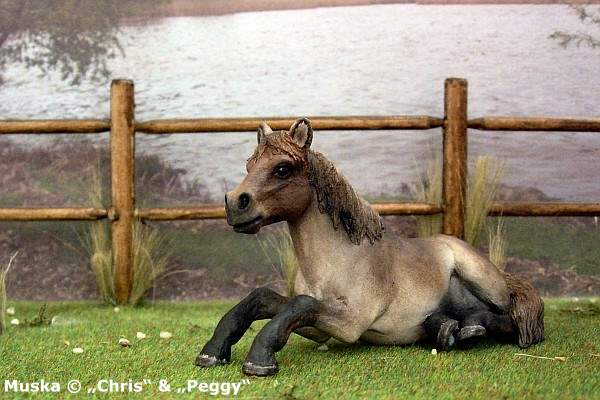 """Muska - Eines von 2 Ponies, die von Heidi Brühl in ihrer Rolle als """"Dalli"""" geritten wurden ..."""